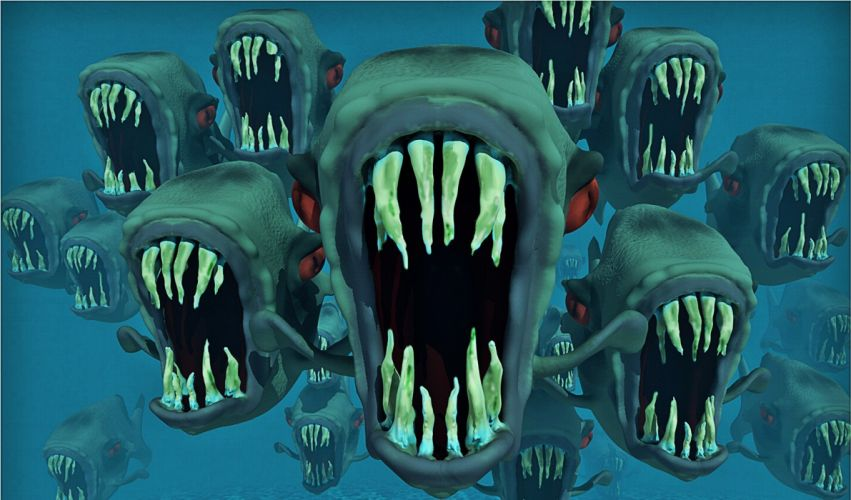 Piranha Nightmare Fish school Fish Water Animal monster teeth fish wallpaper
