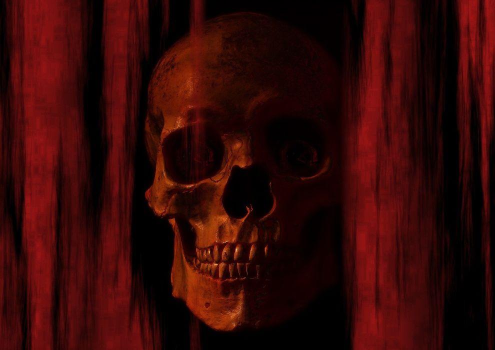 Skeleton Skull Bone Skull Bone wallpaper