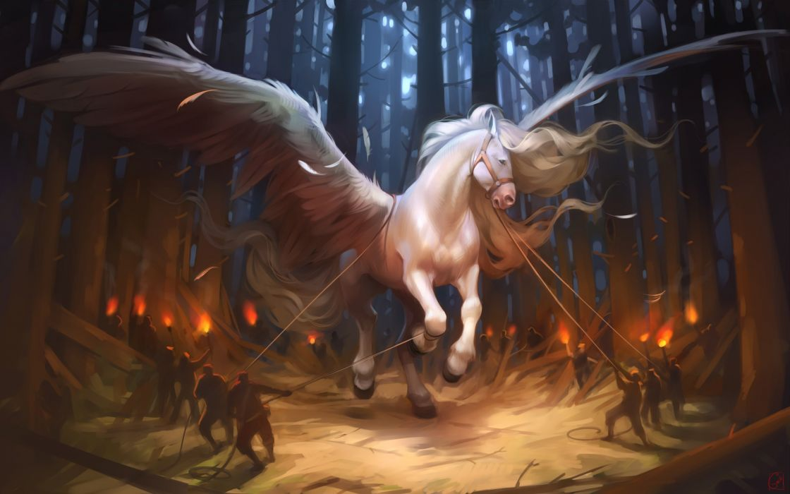 Creative & Graphics Pegasus horse fantasy beauty wallpaper