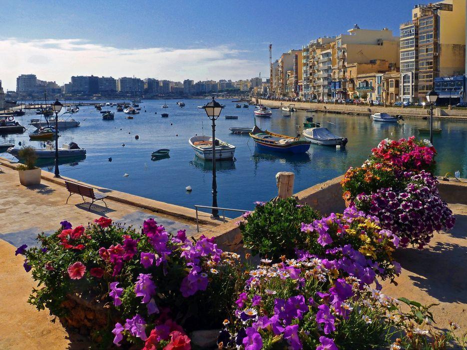 city flower malta sliema water wallpaper