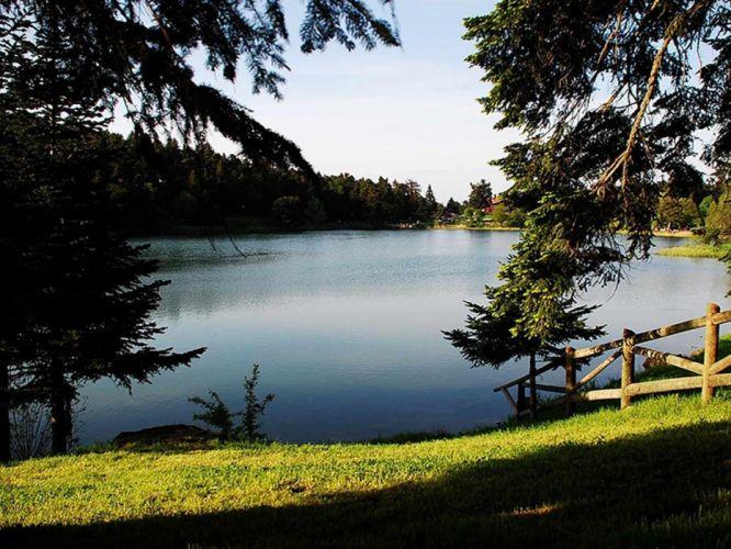golcuk bolu turkey beauty lake nature tree forest landscape wallpaper
