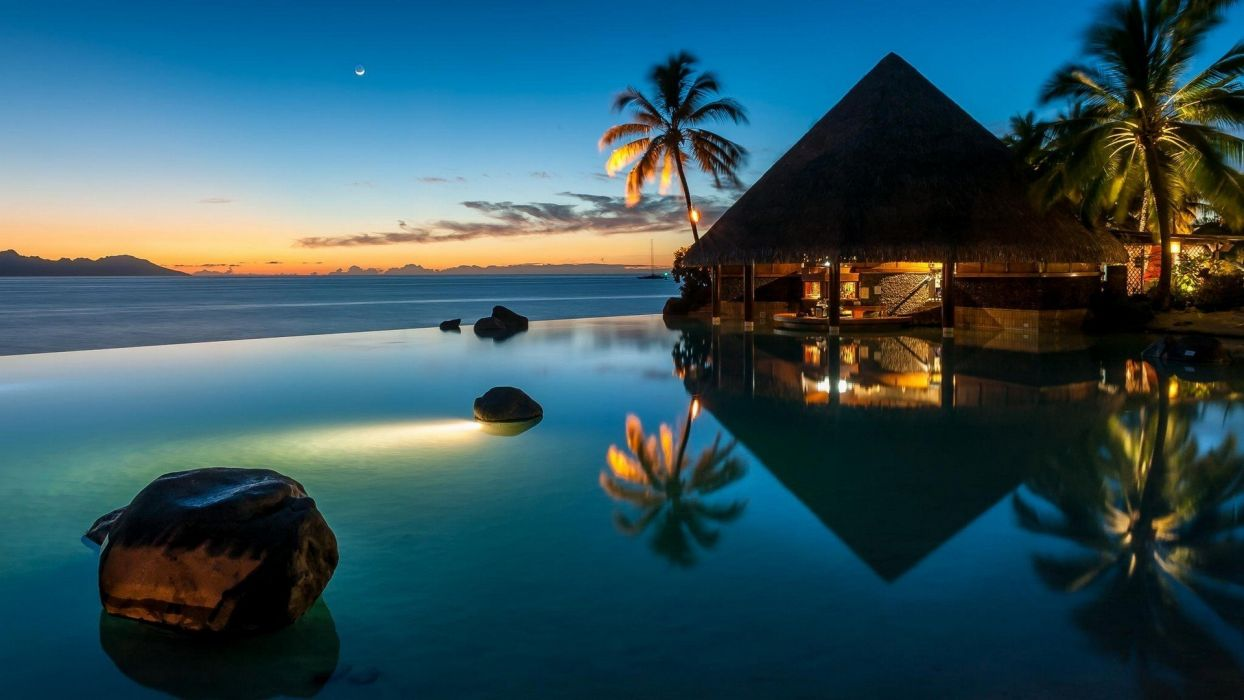 Bar beach blue French Polynesia landscape Lights Moon nature Palm Trees reflection resort s wallpaper