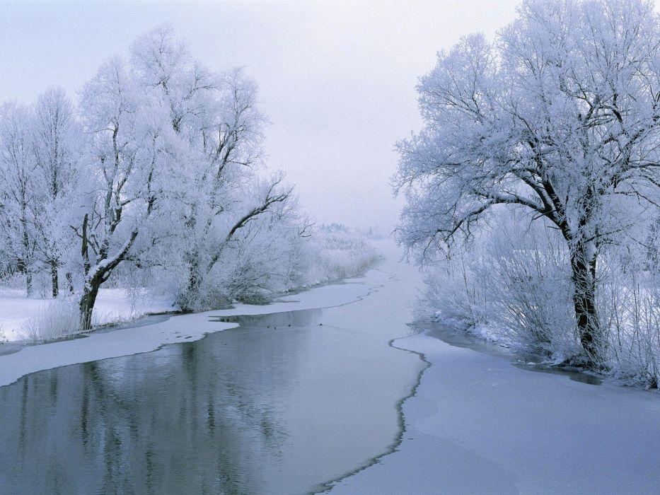 ice river snow Trees winter wallpaper