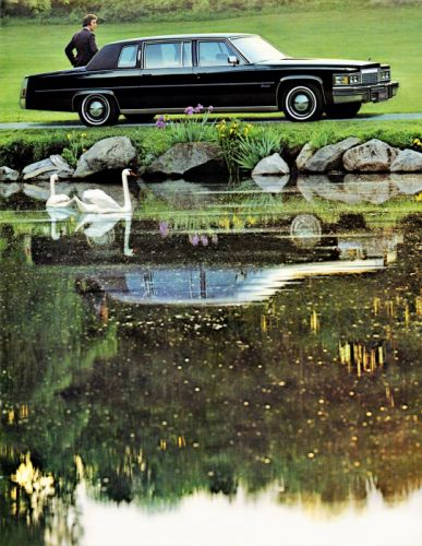 Cadillac Fleetwood Formal Limousine 1979 wallpaper