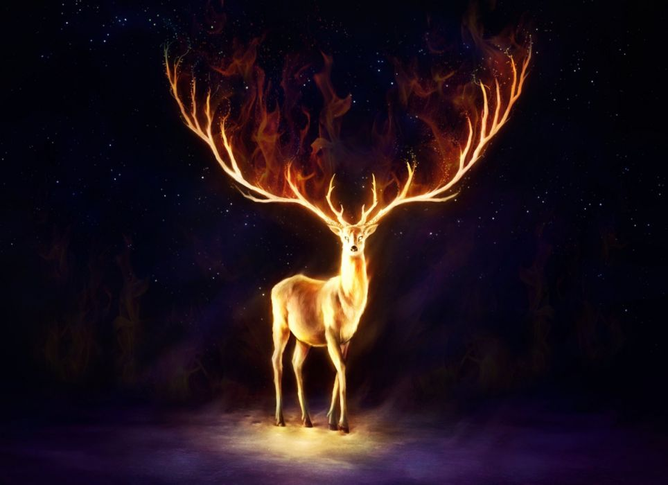 Fire deer wallpaper