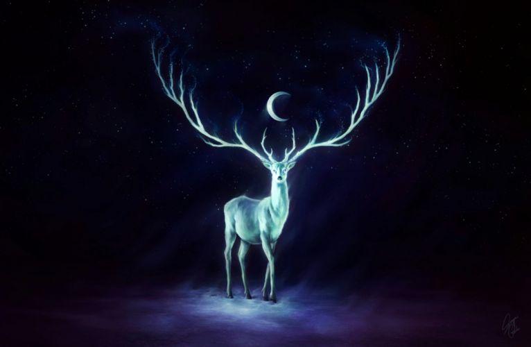 Deer Moon wallpaper