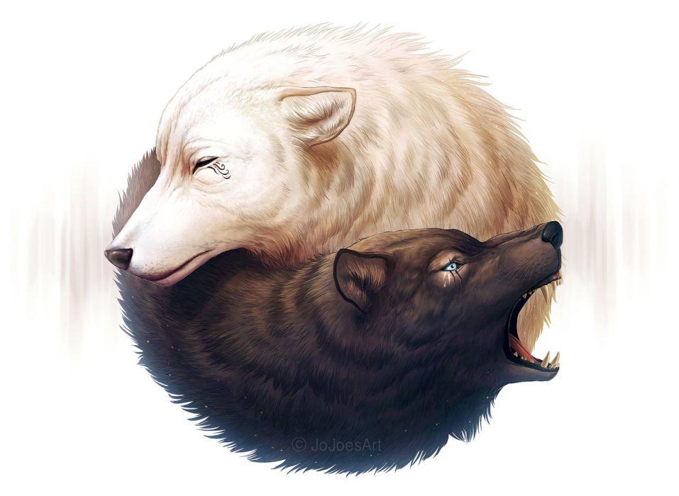 Yin Yang in wolves wallpaper
