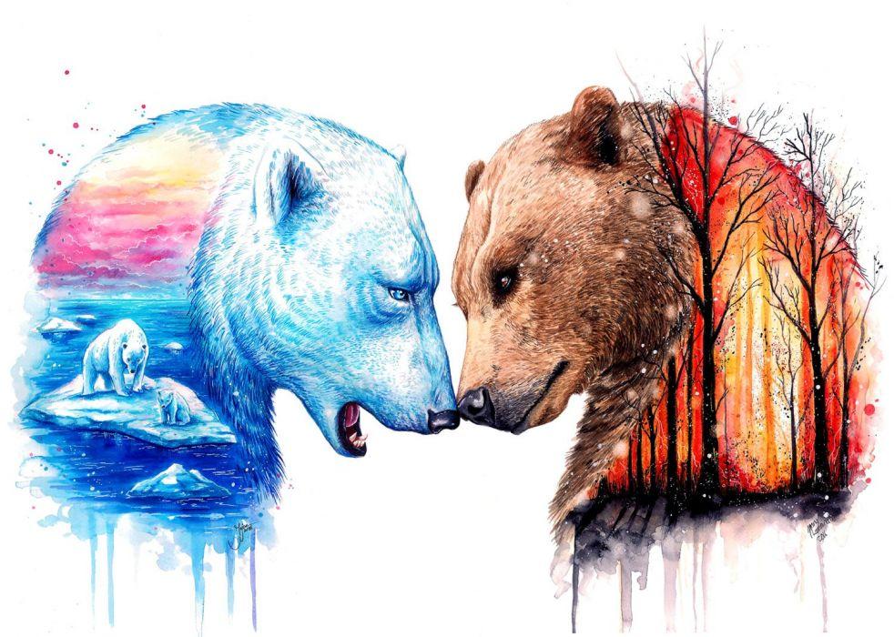 Winter bear and summer bear wallpaper
