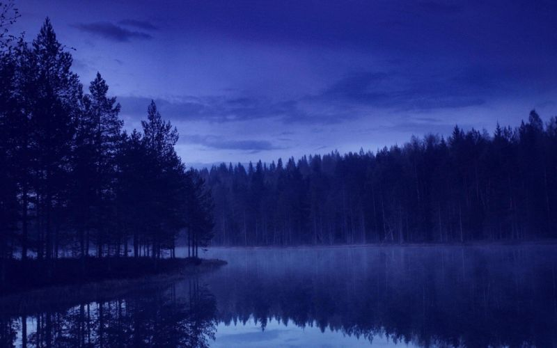 blue Calm Evening forest island landscape nature Pine Trees reflection Trees water wallpaper