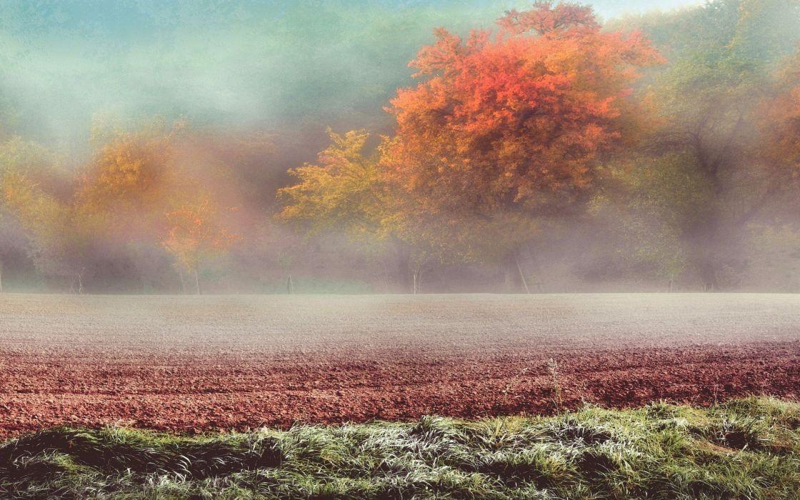 austria Cold Fall field Frost grass Hill landscape mist nature sunrise Trees wallpaper