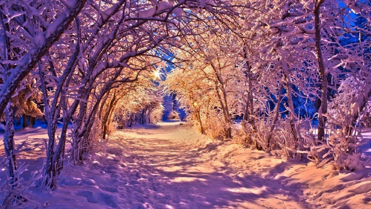 landscape nature winter wallpaper