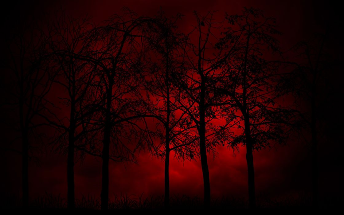 tree red and black burning wallpaper