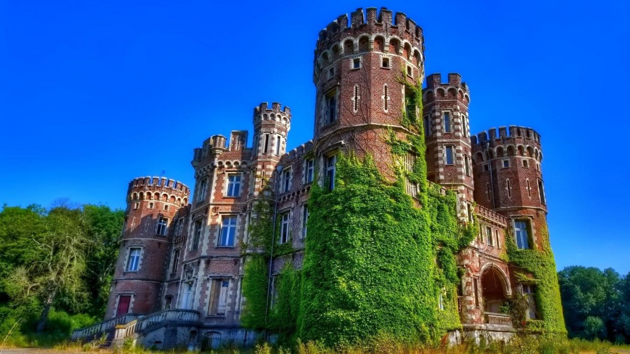 castillo medieval arquitectura enredaderas wallpaper