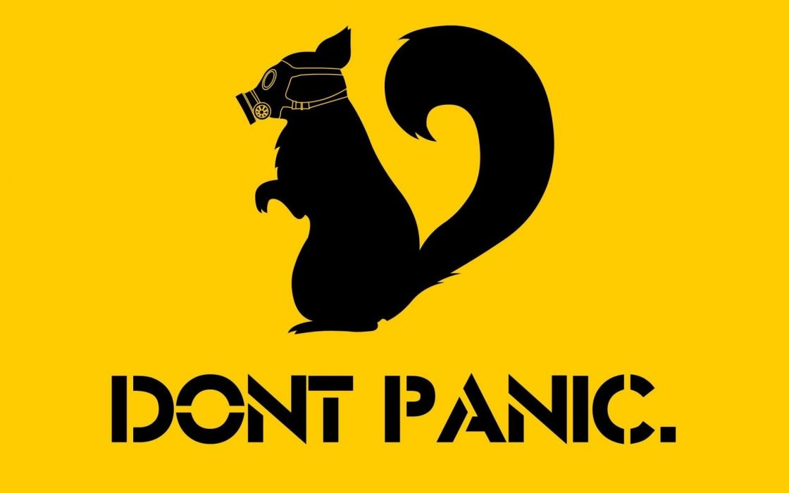dont panic ardilla mascara texto wallpaper