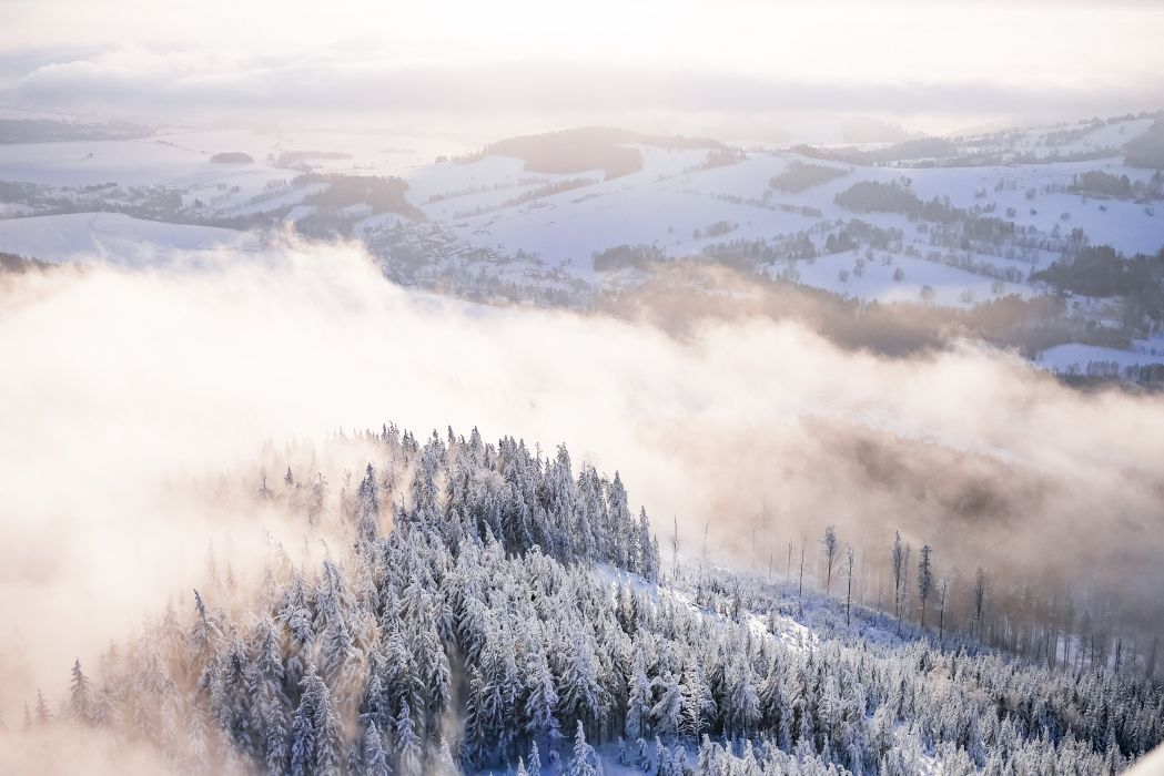 fog snowy forest winter scenery picjumbo  wallpaper