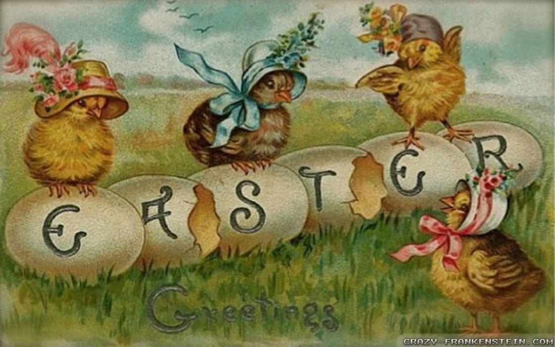 huevos pollitos pascua wallpaper