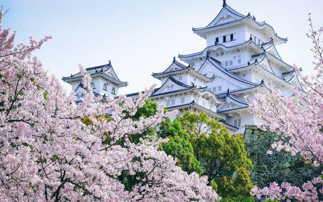 castle Asian architecture cherry blossom landscape Himeji Castle wallpaper
