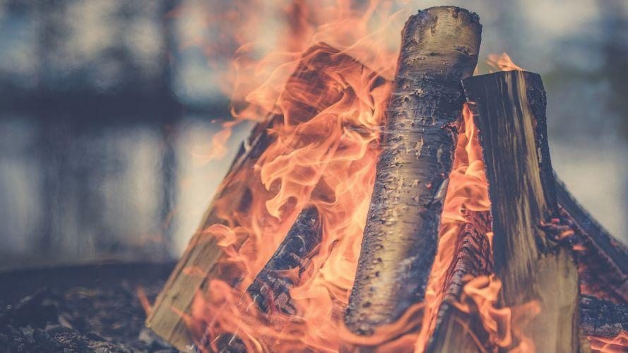 fire log campfire nature wallpaper