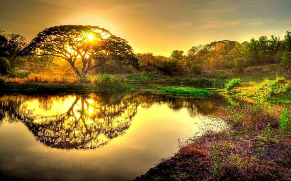 amanecer selva lago bosque natu wallpaper