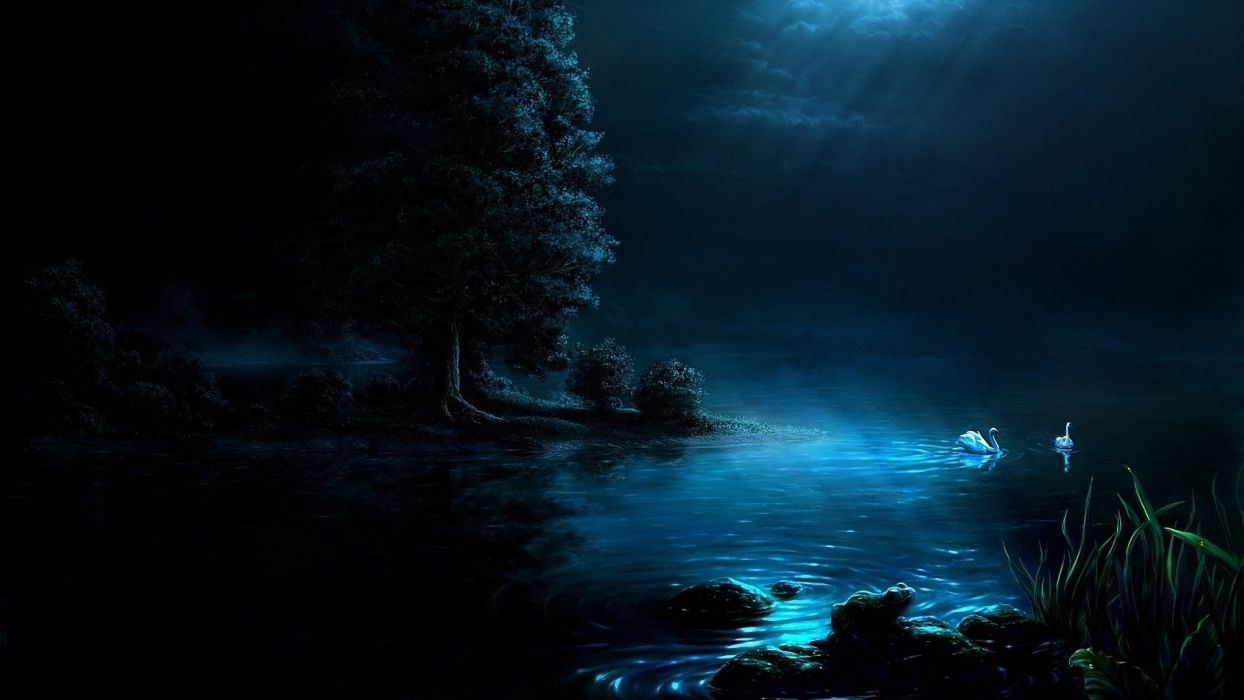 Nature Art Painting Night Light Moon Lake Swans Black Background Beautiful Wallpaper 1920x1080 1074863 Wallpaperup