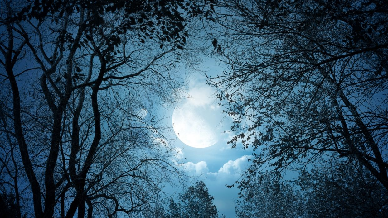 night moon dark background beautiful  wallpaper