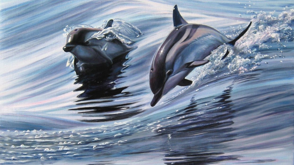picture dolphins animals flying Elena Samara  wallpaper