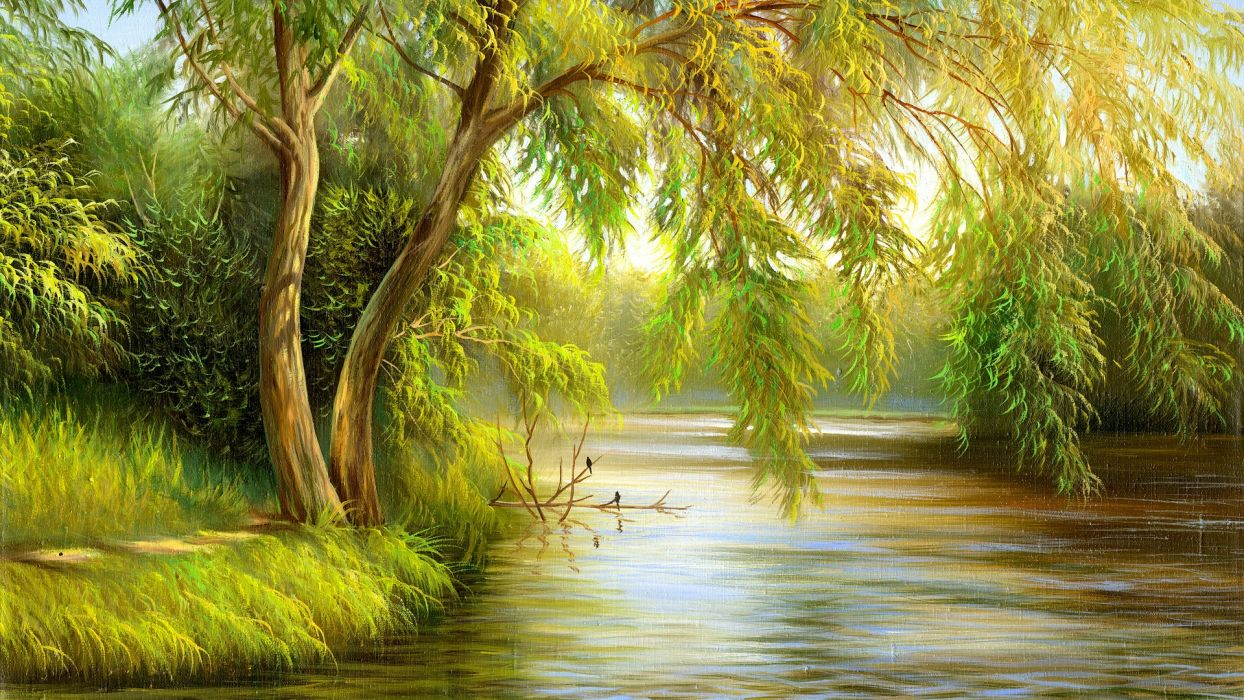 picture painting nature summer river trees birds wallpaper