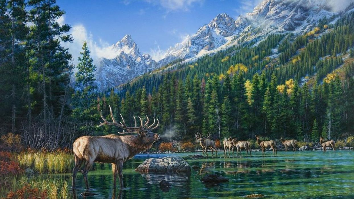 art painting picture mountains forests deer  wallpaper