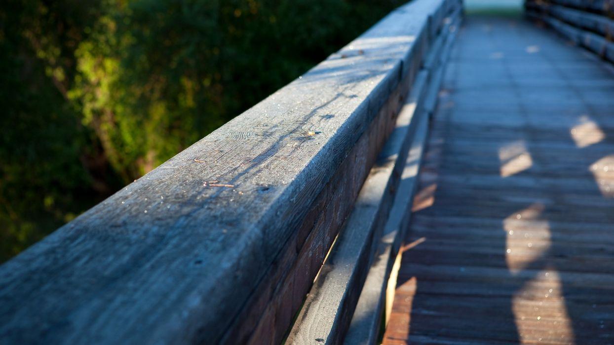 nature bridge focus  wallpaper
