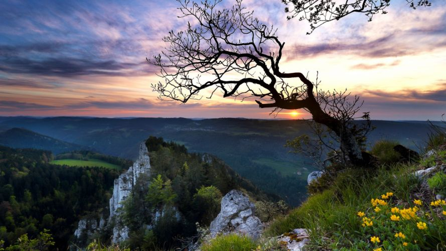 sunset mountains trees landscape switzerland wallpaper