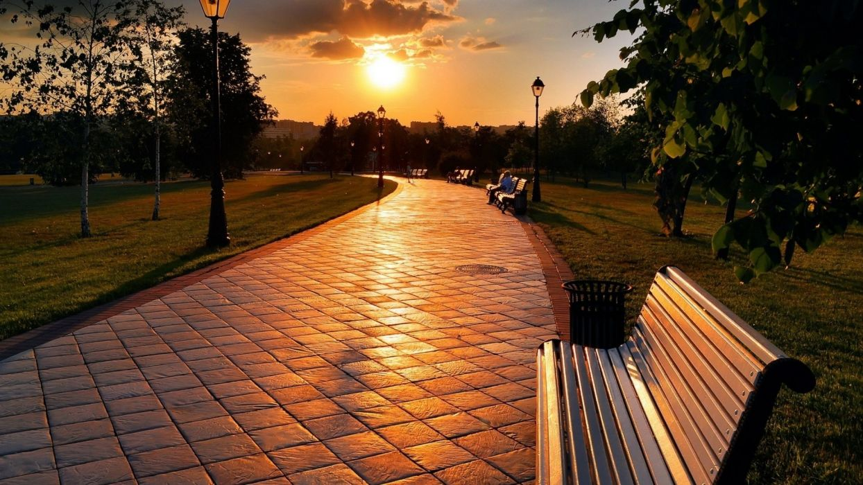 trees alley lights clouds sun sky nature scenic benches a sunset  wallpaper