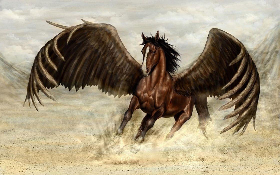 pegasus caballo alado fantasia wallpaper