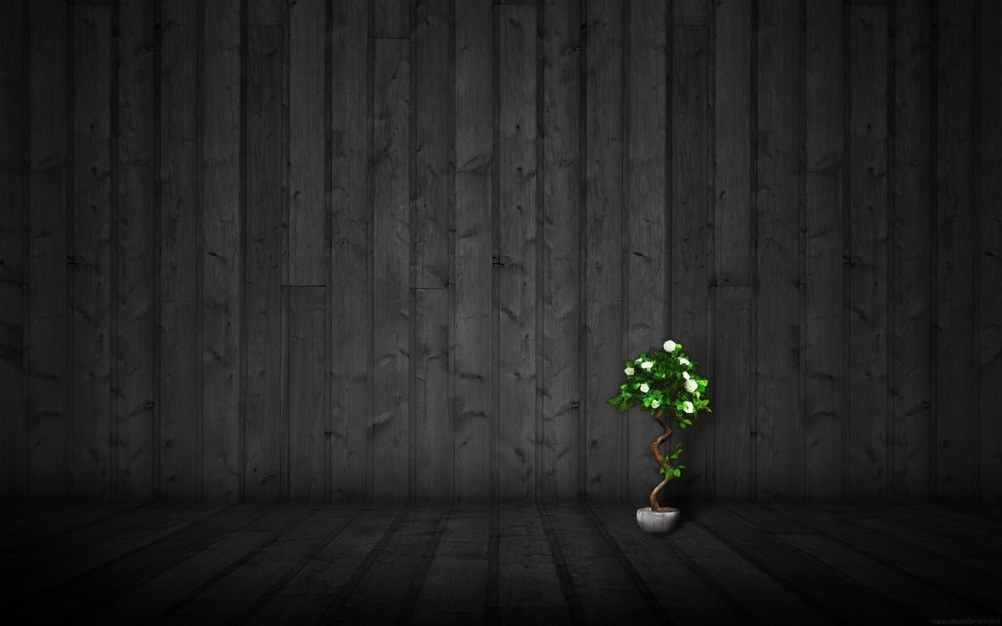 Little tree black vertical pipes wallpaper