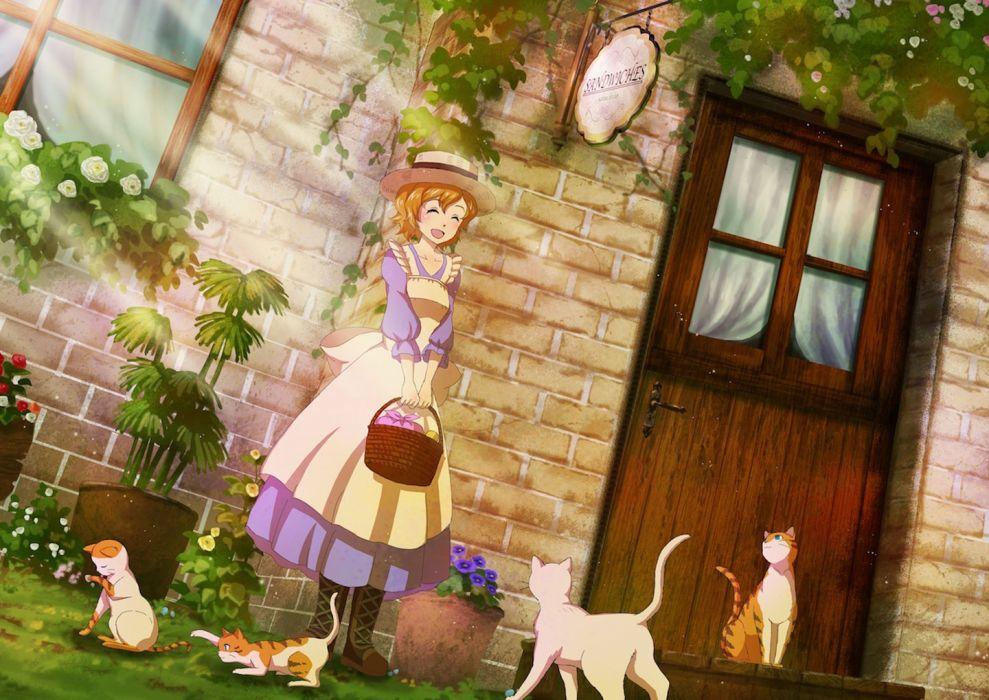apron blush boots cat dress flower happy hat orange hair short hair wallpaper