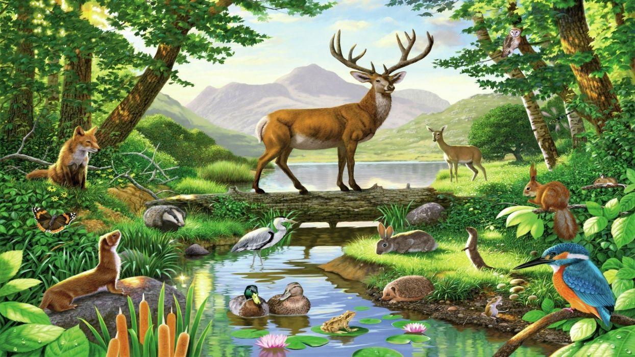 forest-pond-deer-fox-squirrel-weasel-duck wallpaper