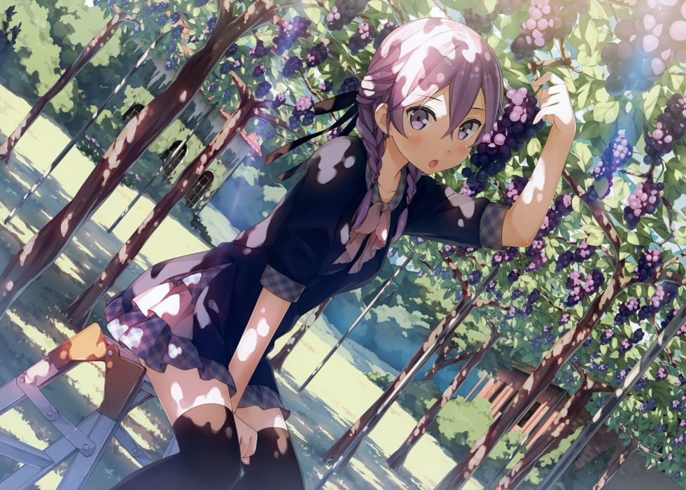 Anime Girl Grape Braids Sunlight Fruits wallpaper