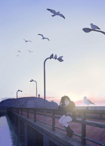 Anime Girl Bridge Scenic Birds original anime girl wallpaper