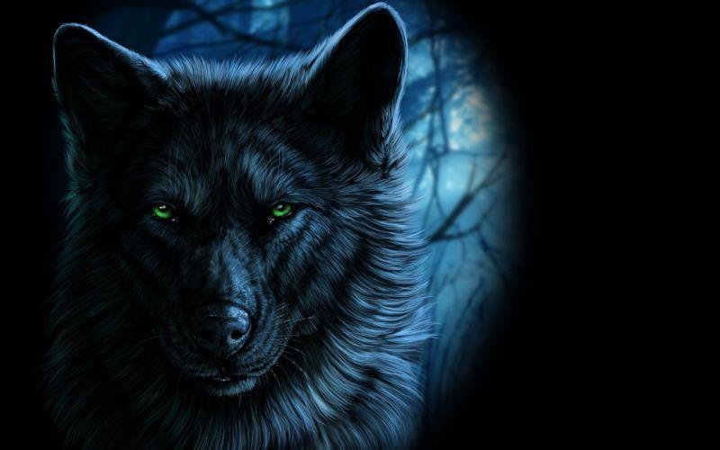 Wolf Majestic Green Eyes wallpaper
