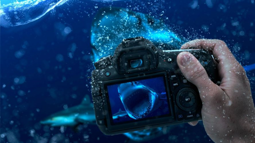 STYLES occupation underwater photography wallpaper