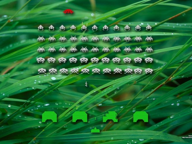 grass space invaders clasico video juego wallpaper