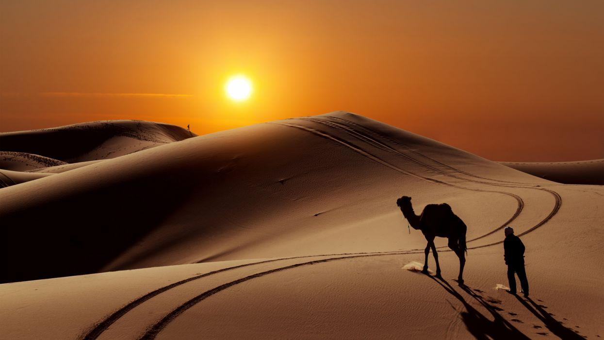 sun people desert camel 7680x4320 wallpaper