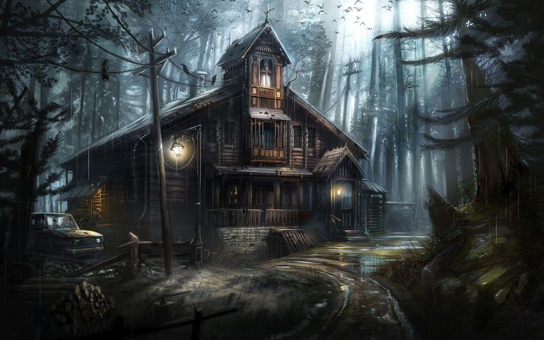 house birds dark forest wallpaper