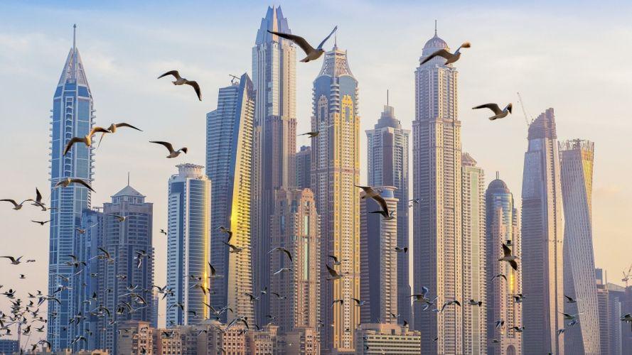 architecture building skyscrapercity scape United Arab Emirates Dubai Birds Flying wallpaper