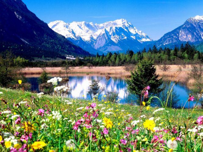 flower lake Lovely Spring Landscape wallpaper