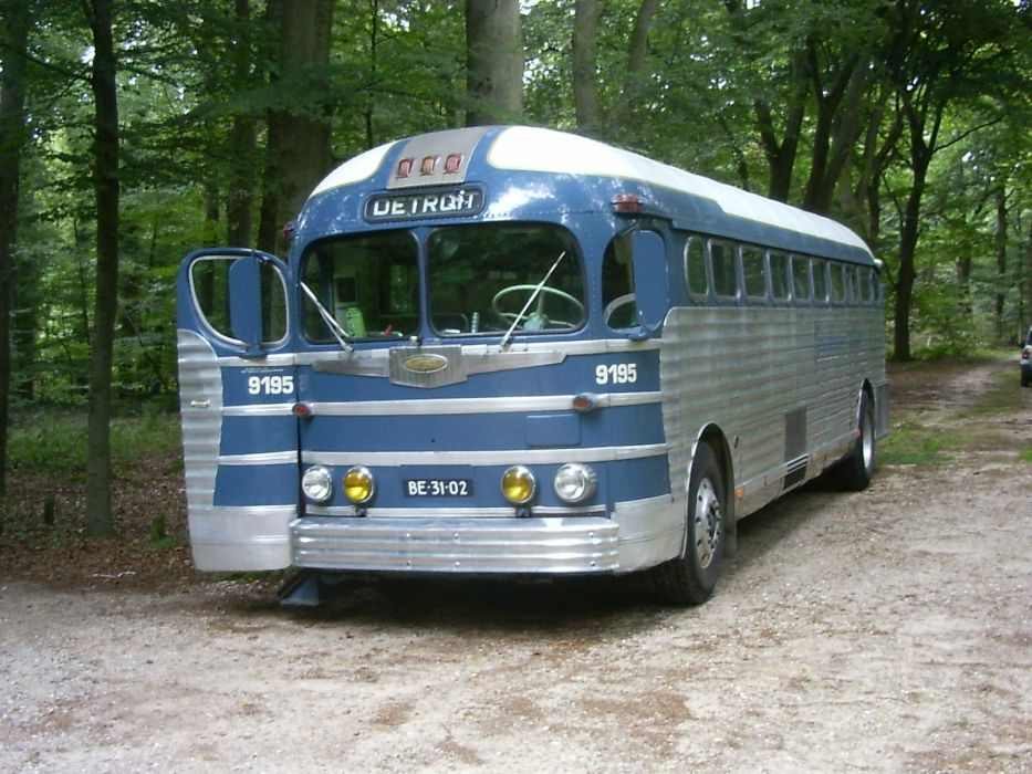 viejo autobus vehiculo bosque wallpaper