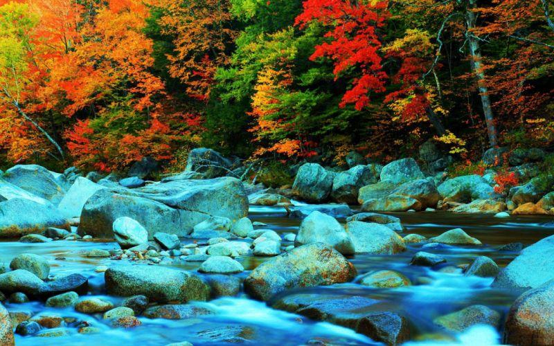 autumn fall trees stones river colors wallpaper