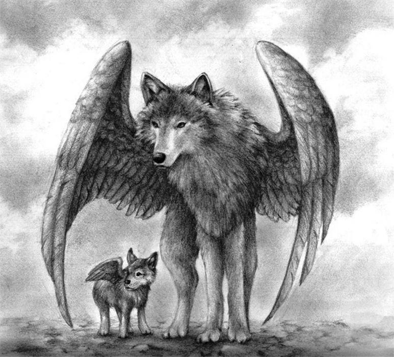 sky art animals winged wolves fantasy wallpaper