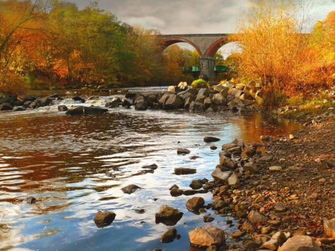 rivers yellow seasons reflections nice leaves bridges beautiful rocks water trees gold forests cool nature spring photography autumn wallpaper