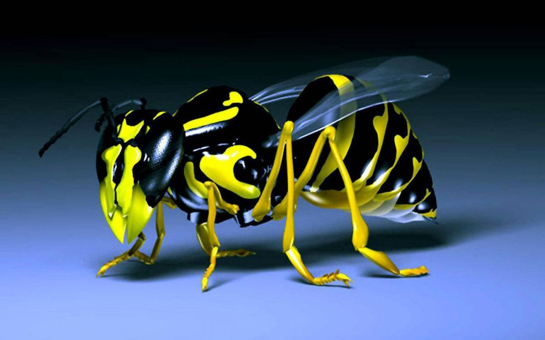3D-Bee-HD-Wallpaper wallpaper