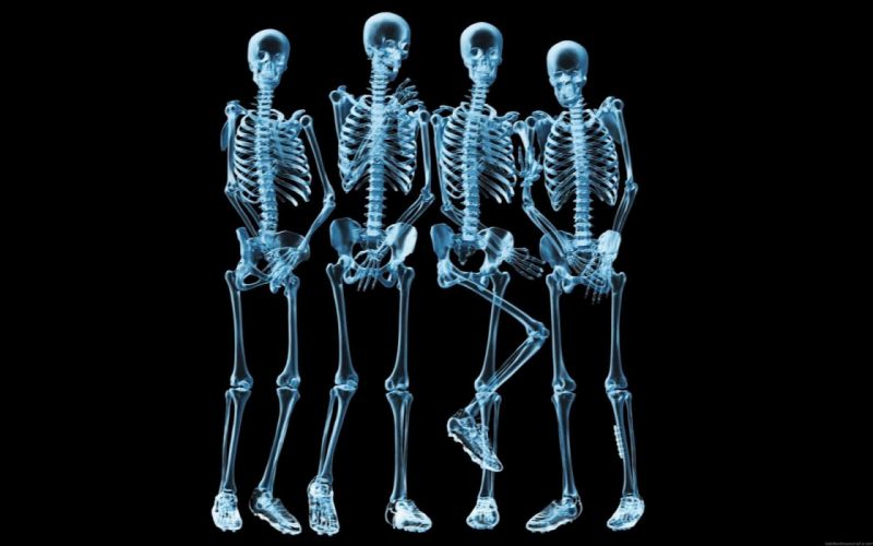 Radiografia indiscreta abstracto humor wallpaper